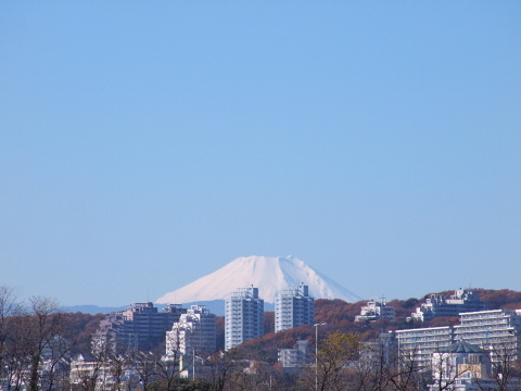 005_s_7139_18-180_富士山_fuchu_20101204.jpg