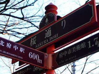 091206_PC062144_fuchu_桜通り.JPG
