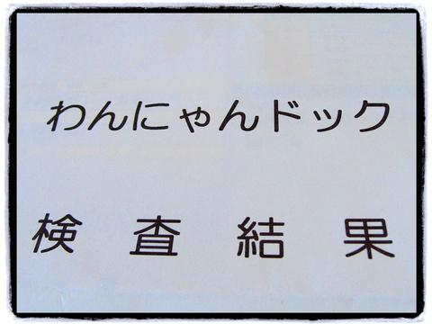 わんにゃんドッグ_20111203.jpg